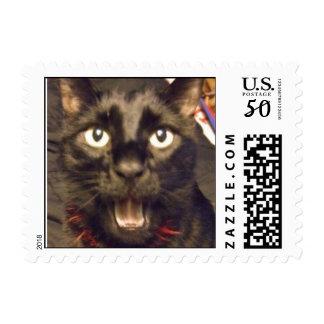 Ninja Speaks Stamps