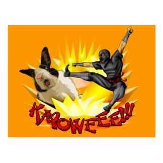 Ninja vs. Bunny Postcard(?!?)