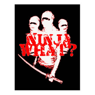 NINJA WHAT? POSTCARD
