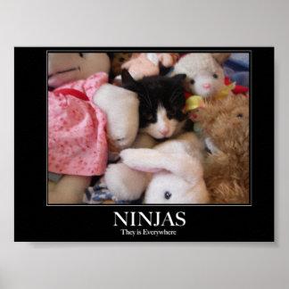 Ninjas - están por todas partes póster