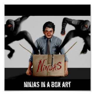 Ninjas in a Box Poster