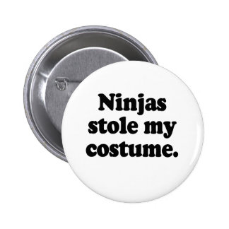 Ninjas stole my costume pinback button
