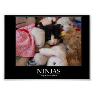 Ninjas - They is everywhere Poster