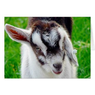 Niño bonito de la cabra tarjeta de felicitación