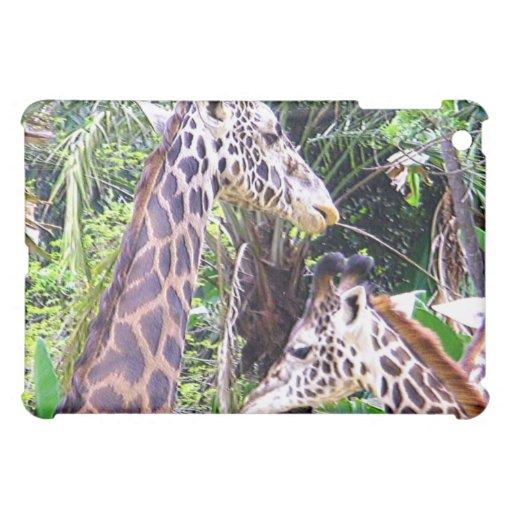 Niño de Giraffes_Mother