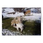 Niño de la cabra en la hierba Nevado Tarjeta De Felicitación