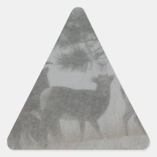 Niño del Big Horn en la nevada Pegatina Triangular