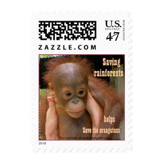 Niño del poster del orangután del bebé tamaño sellos