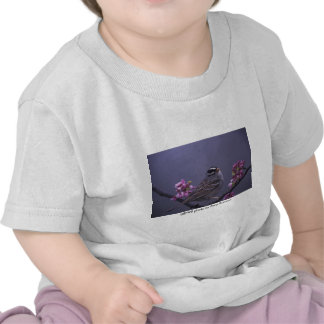 Niño T/gorrión Blanco-coronado Camiseta