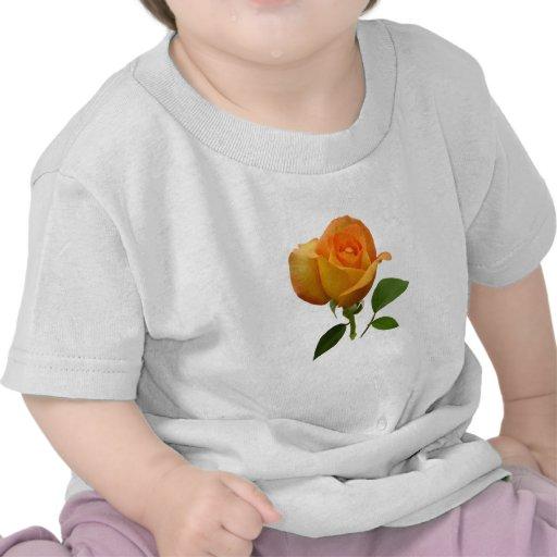 Niños anaranjados del capullo de rosa camisetas
