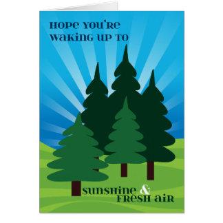 Niños en los árboles de la sol del campamento de tarjeta de felicitación