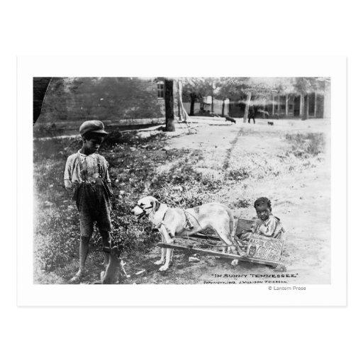 Niños negros con la fotografía dibujada perro del  postal