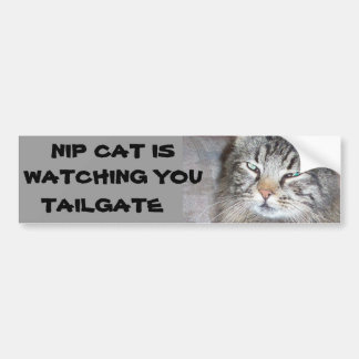 Nip Cat is watching TAILGATE Bumper Sticker