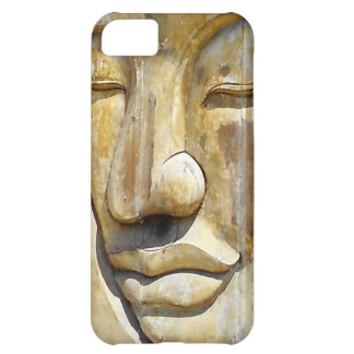 Nirvana Case For iPhone 5C