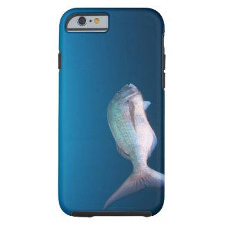 Nishiizumachi, Shizuoka Prefecture, Japan Tough iPhone 6 Case