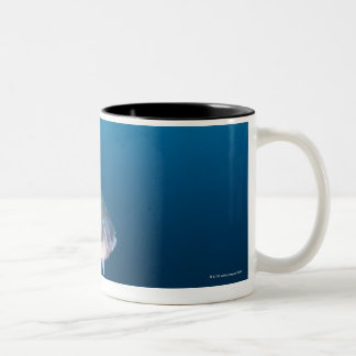 Nishiizumachi, Shizuoka Prefecture, Japan Two-Tone Coffee Mug