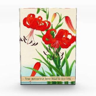 Nishimura Hodo Tiger Lilies shin hanga flowers Acrylic Award