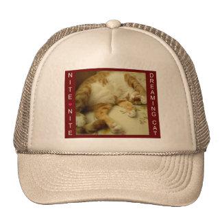 Nite Nite Dreaming Cat Mesh Hats
