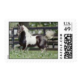 Nite of Fame Postage Stamp