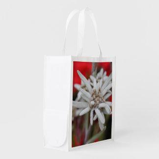 Nivale precioso del Leontopodium de Edelweiss Bolsa De La Compra