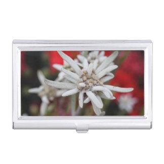 Nivale precioso del Leontopodium de Edelweiss Caja De Tarjetas De Negocios