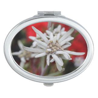 Nivale precioso del Leontopodium de Edelweiss Espejos De Maquillaje