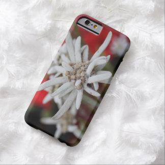 Nivale precioso del Leontopodium de Edelweiss Funda De iPhone 6 Barely There