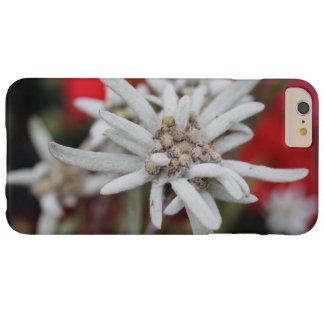 Nivale precioso del Leontopodium de Edelweiss Funda De iPhone 6 Plus Barely There