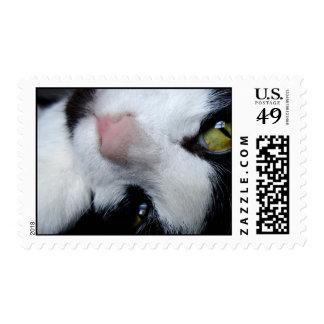 Nixon Stamp
