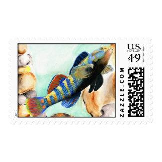 NJ 2008 Lusardi 796 high Postage