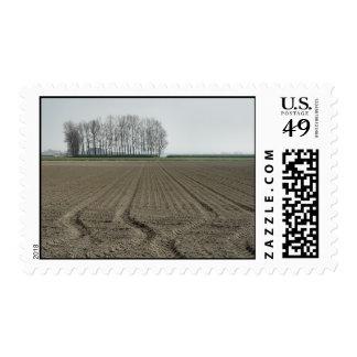 NL-Zeeland-Just sowed in Stamp