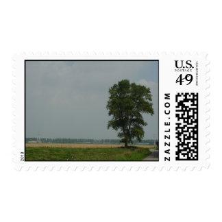 NL-Zeeland-Waterlandkerkje Stamps