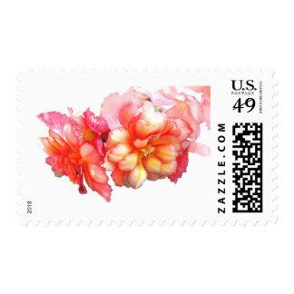 No. 1 de la begonia tuberosa sellos postales