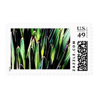 No. 1 de la yuca timbre postal