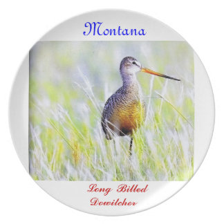 No # 23, B(107),Dinner Plate,Long Billed Dowitcher Melamine Plate