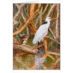 No. 2 del Egret del mangle Felicitación