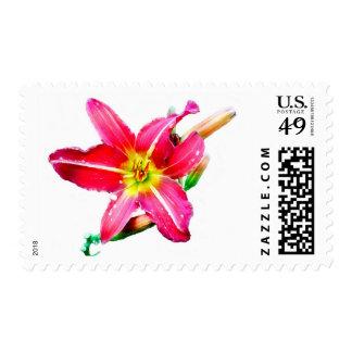 No. 2 del lirio de día sellos postales