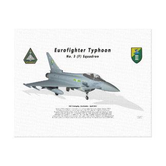 No. 3 Sqn del tifón de Eurofighter con la sombra Lona Estirada Galerias