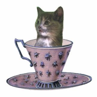 No Added Sugar kitten photosculpture
