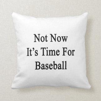 No ahora es hora para el béisbol cojin