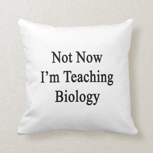No ahora estoy enseñando a biología cojines