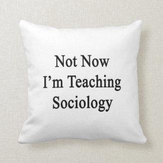 No ahora estoy enseñando a la sociología cojin