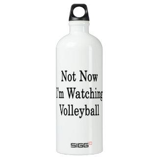 No ahora estoy mirando voleibol