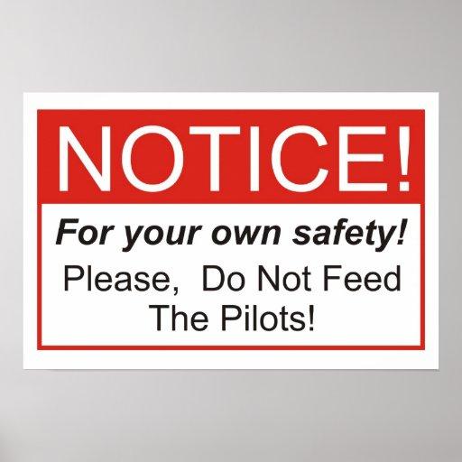 ¡No alimente a los pilotos! Póster