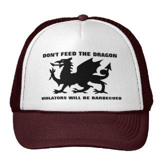 No alimente el gorra del dragón