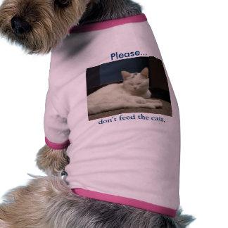 No alimente los gatos ropa de mascota