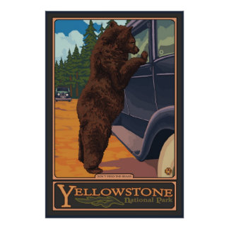 No alimente los osos - Yellowstone parque nacional Poster