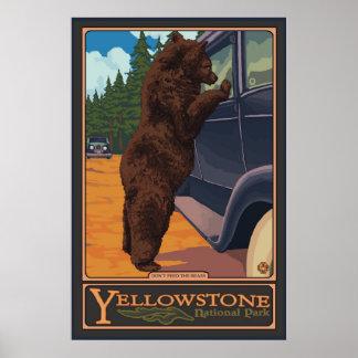 No alimente los osos - Yellowstone parque nacional Póster