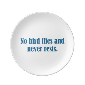 No Bird Flies And Never Rests Porcelain Plate