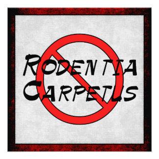 No Carpet Rats Announcements